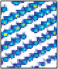 2009 NJP 11 023021